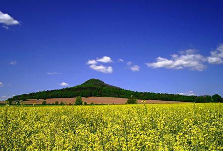 The volcano Stock Photo - 1826505