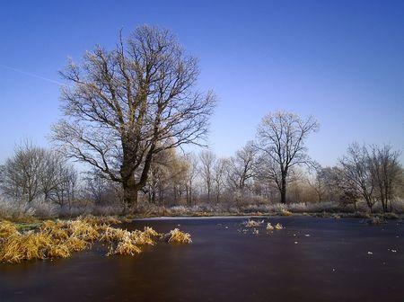 Winter Stock Photo - 4289016