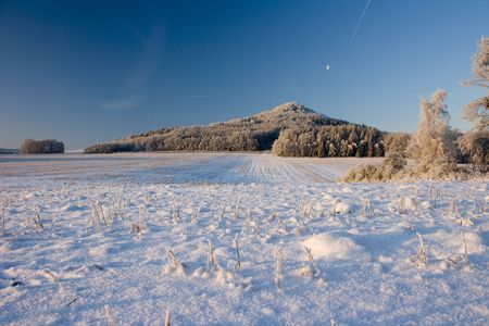 Winter field Stock Photo