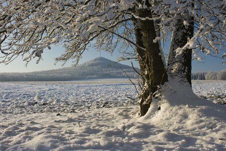 Winter fill