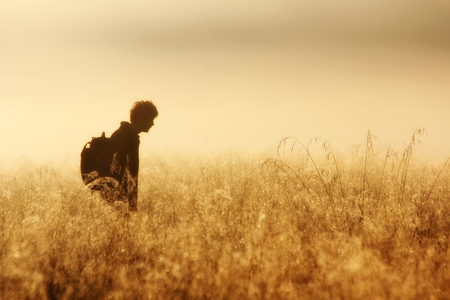 Silhouette of a man in a misty field Stock Photo