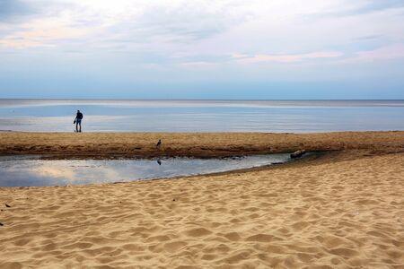 Sauklrasti, latvia 09/08/2019 Man and bird watching sunset at the beach Saulkrasti. Concept of environment and ecology. Banco de Imagens