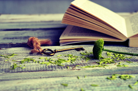 Open book with key on a wooden background Imagens