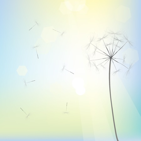 Bright dandelion design, vector art Vector
