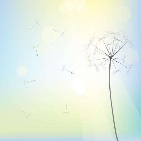 Bright dandelion design, vector art Vector