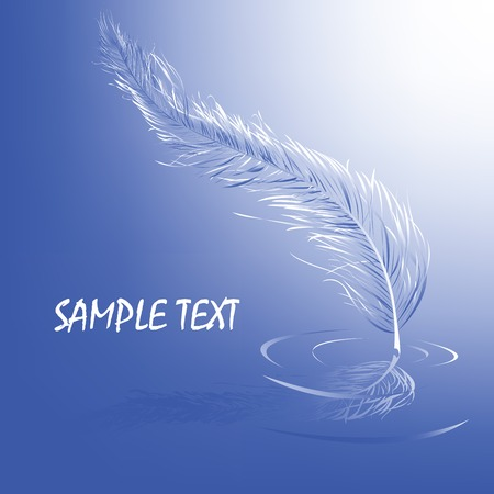 Feather in the water, vector text card Stock Vector - 5514187