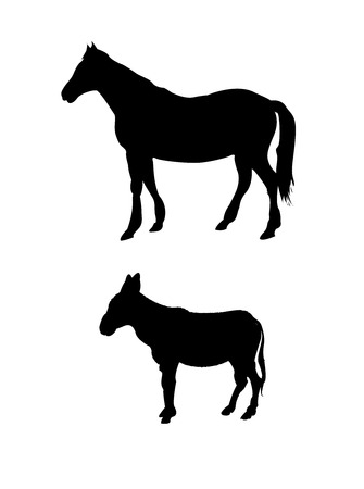 Vector horse and donkey silhouette Stock Vector - 5697445