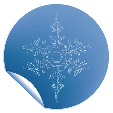 Blue snowflake label Vector