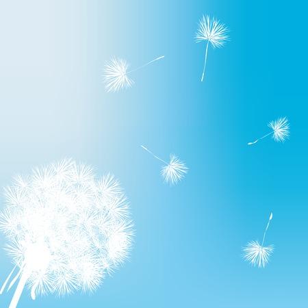 Dandelion gift card illustration Stock Vector - 5855140