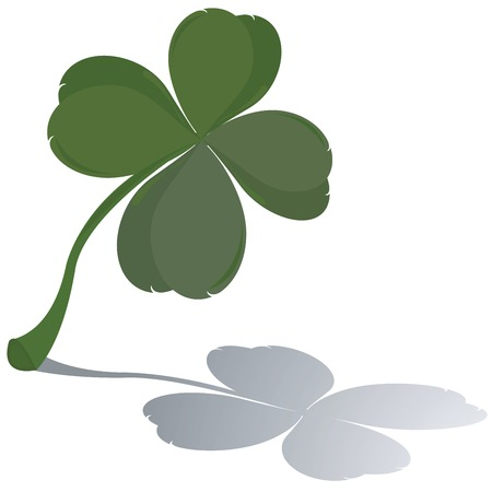 goodluck: Fresh four leaf clover with reflection