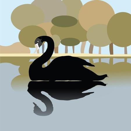 swans: Cisne en un lago, ilustraci�n de fondo rom�ntico en negro