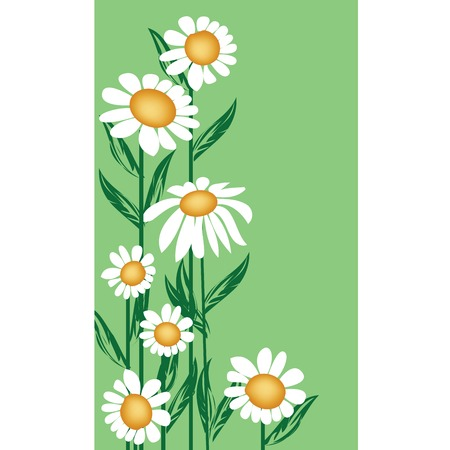vulgare: Floral background