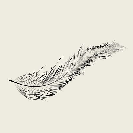flying float: Graphic feather, art illustration Stock Photo