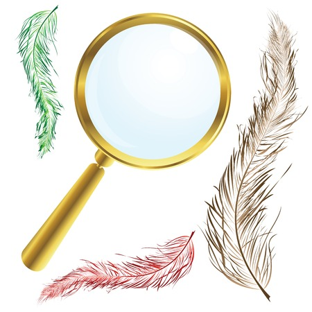 Golden magnifing glass with vintage feathers Vector