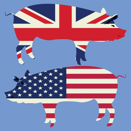 Brittish and American, stylized flags with pig silhouette photo