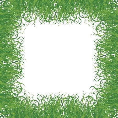 Fresh grass frame over white background Stock Vector - 6855148