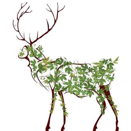 ciervo: Ilustraci�n de dise�ador de venado Vectores