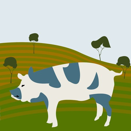Spotted pig silhouette on a farming crop Stock Photo - 7101257