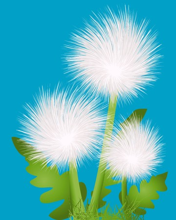 Background sketch with dandelions Stock Photo - 7167131