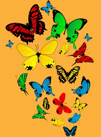 Color butterflies sketch on a light orange background Stock Photo - 8084571