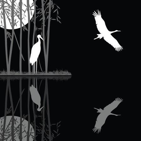 Night landscape with a stork family on a lake Stock Vector - 8104204