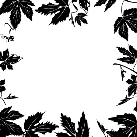 Grape leaves, foliage over white background Vector