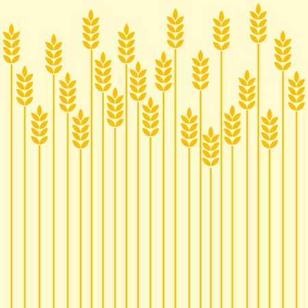 wheat illustration: Wheat field background