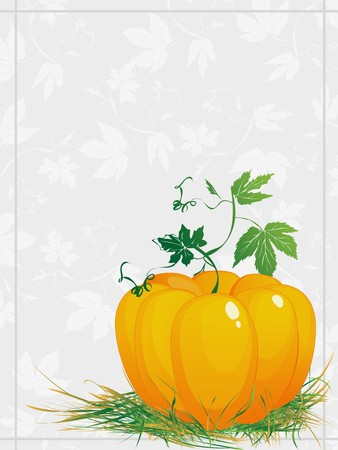 verdure: Thanksgiving, ripe  pumpkin  with green leaves and grass, greeting card