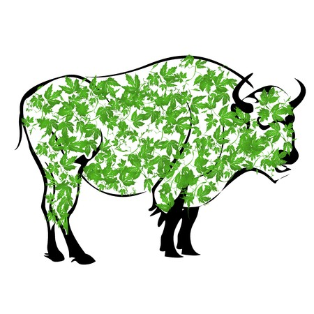 Sketch of a buffalo made from autumn leaves Stock Photo - 8169962
