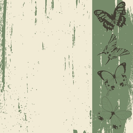 Grunge background sketch with butterflies Stock Photo - 8414350
