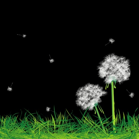Dandelions and grass in the night, abstract art Stock Photo - 8613903