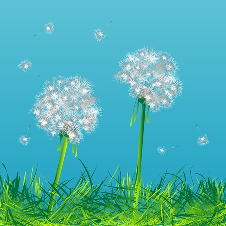 posterity: Two dandelions in the wind Stock Photo