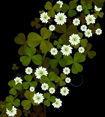 three leafed clover: Clover background, design for St. Patricks Day