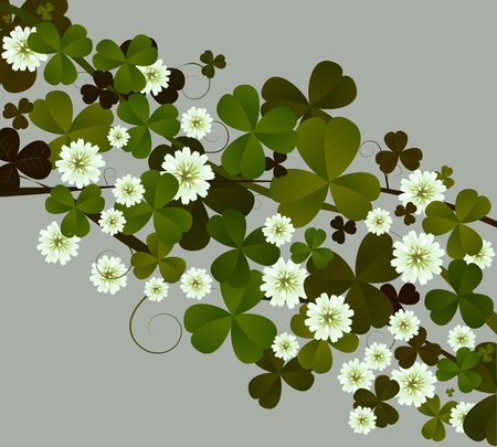 four leafed clover: Background illustration with clover leaves and flowers