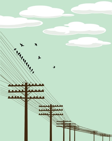 electricity pole: Electricity poles and birds silhouettes background illustration
