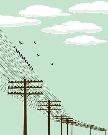 polo: Ilustración de fondo de siluetas de aves y postes de electricidad Vectores