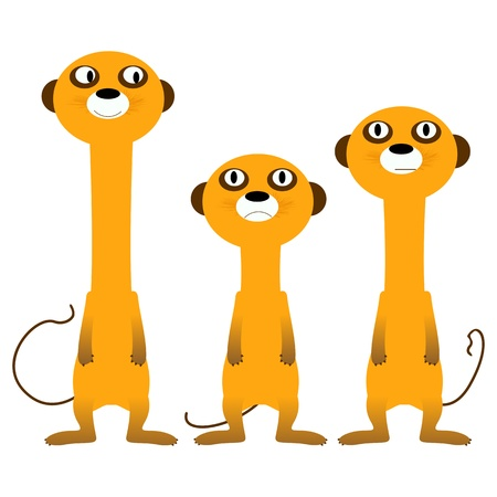 funny creature: Curious meerkats, isolated and grouped objects over white background Illustration