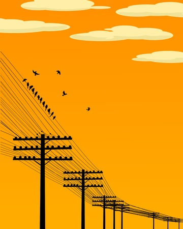 Background illustration wirth birds and telegraph poles silhouettes. Vector