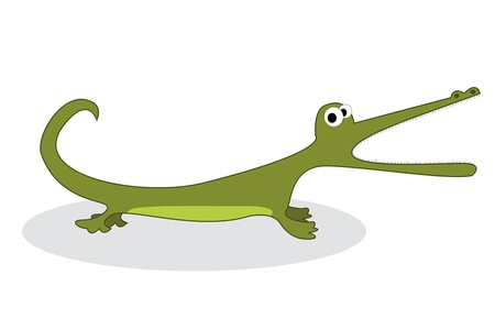 Clip art crocodile, isolated object over white background Vector
