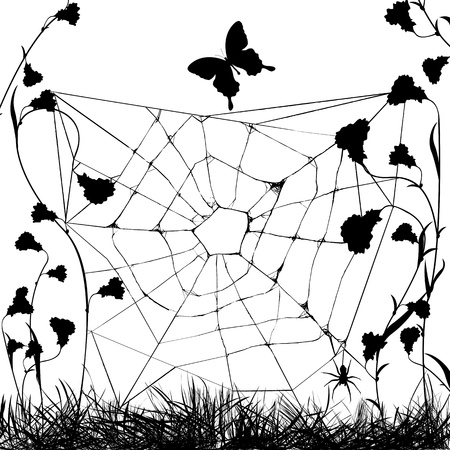 web spider in black and white, grunge background Vector