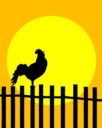 feathered: Rooster silhouette on a fence announcing sunrise Illustration