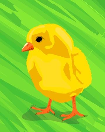 fuzz: Cute little chicken on the green, abstract art.