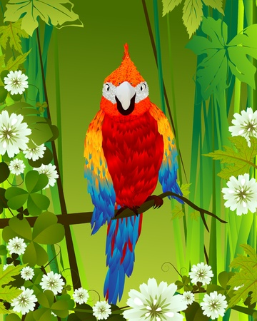 amazon rainforest: Tropical background with parrot and flowers, graphic art