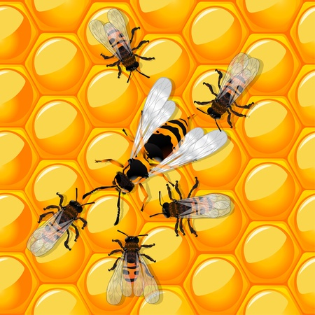 Working bees defending a honeycomb from a wasp. Trasparency effect. Vector