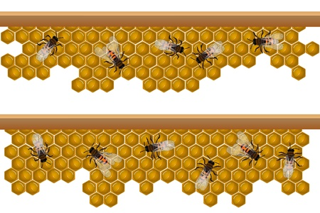 hives: Design elements for a seamless border, pattern with working bees on a honeycomb