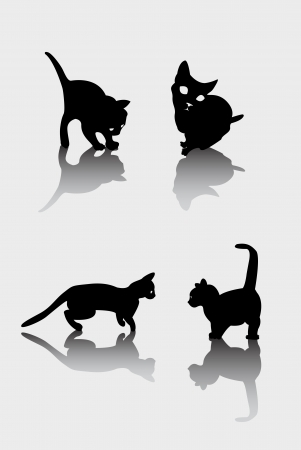 Playing cat silhouettes and shadow Stock Vector - 13654941