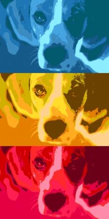 beagle: Pop art style illustration of a cute puppy.