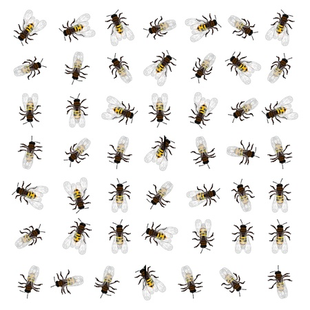 stinging: A seamless repeating pattern design with working bees. Illustration