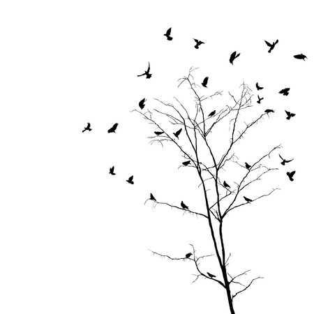 Silhouettes of birds over brunches of a leafless autumn tree  Isolated objects over white background  Vector