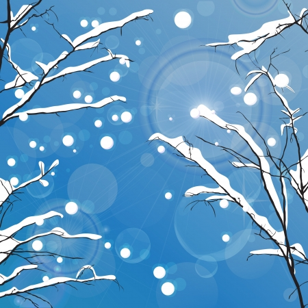 Winter leafless trees background  Tansparency effect used  Vector